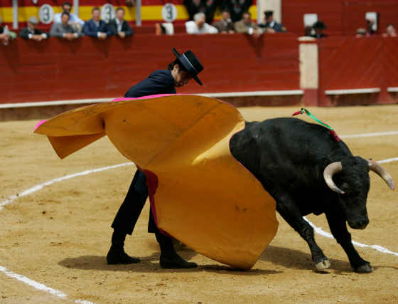 Festival taurino en Almería. Asociación Española contra el Cáncer ('08)