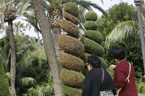 El vandalismo provoca daños en los jardines de Cádiz