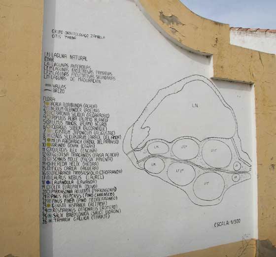 Plano de la zona con una leyenda que detalla el lugar donde se encuentra cada especie.  Foto: Belen Vargas