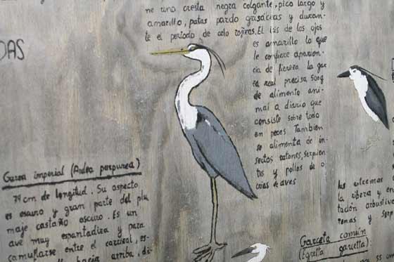 Varios paneles informativos muestran las distintas especies que se pueden encontrar en la zona.  Foto: Belen Vargas