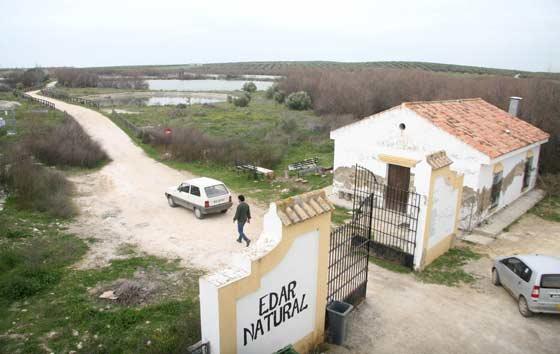 Vista de los humedales de Lantejuela.  Foto: Belen Vargas