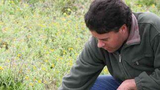 Los humedales de Lantejuela alberga flora de distintas especies.  Foto: Belen Vargas