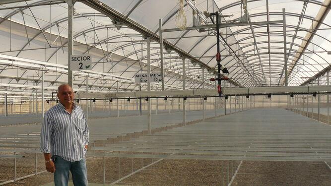 el semillero el plantel prev injertar 16 millones de sand as