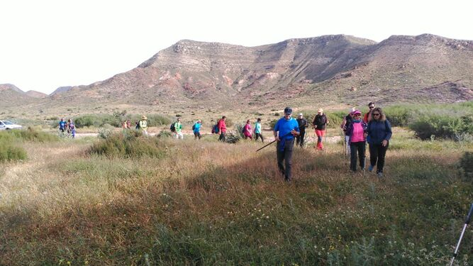 Los senderistas recorrieron los principales enclaves del parque natural.