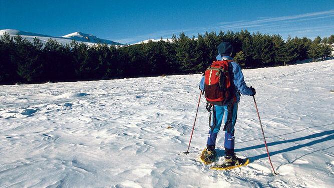 La ascensión a El Chullo requiere de buenas condiciones físicas.