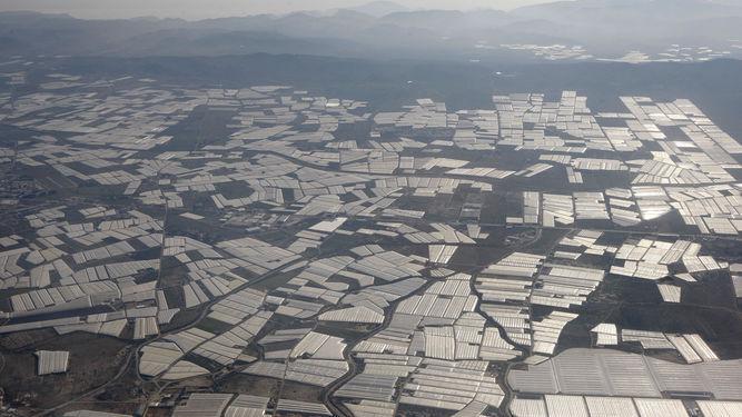 Los agricultores del Poniente siguen preocupados con la escasez de agua.