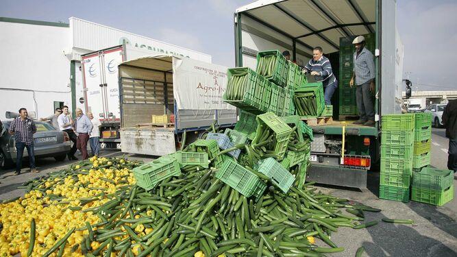 Las organizaciones agrarias de la provincia apuntan a la gran distribución como responsable de este fenómeno, comprando a pérdidas a las comercializadoras.