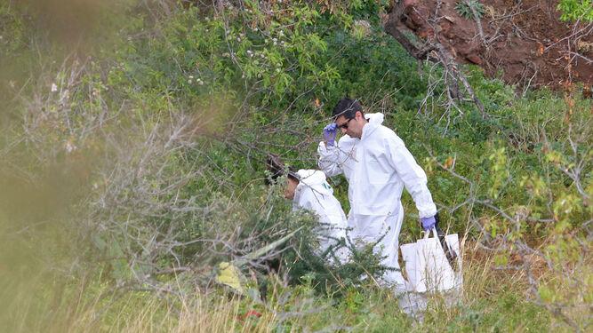 Miembros de la Policía Científica de la Guardia Civil trabajan sobre el terreno.