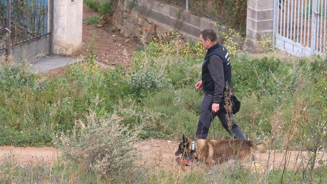 También hicieron acto de presencia los canes de la Guardia Civil.