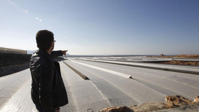 Existen trabajos dirigidos hacia el desarrollo de láminas semitransparentes para la cubierta del invernadero.