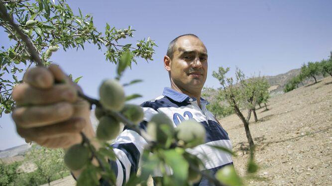 Miguel Ángel Ortiz, en su finca, donde tiene implantado el riego por goteo para los almendros.