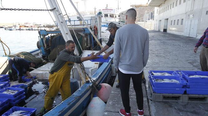 'NAUFRAGIO' DEl arrastreLa pesca demersal del Mediterráno pone la esperanza en el PE