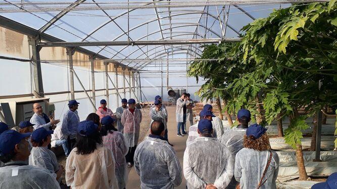 Visita de los agricultores del Grupo La Caña a la Estación Experimental de la Fundación Cajamar, el pasado mes de febrero.