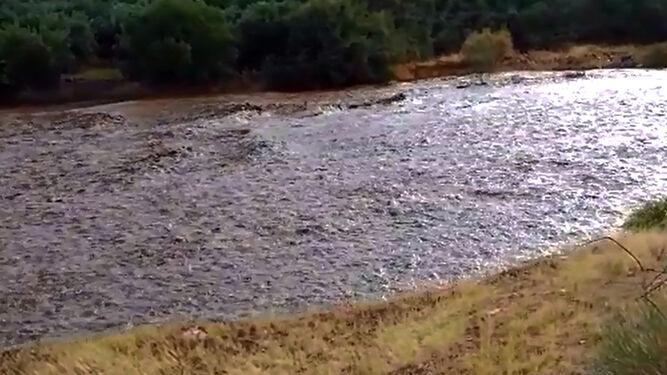 Así bajaba el Río Nacimiento ayer minutos después de la tromba de agua.
