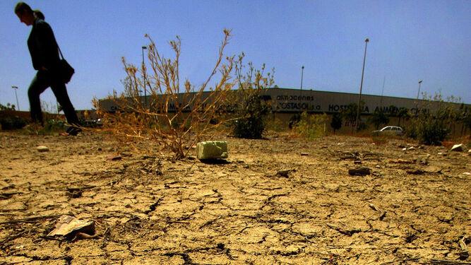 La gestión del agua y la solidaridad entre las diferentes cuencas es fundamental ante la escasez de recursos.