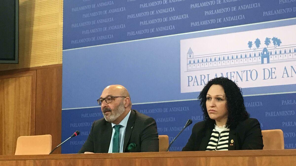 Luz Belinda Rodríguez dejará por acoso laboral el grupo parlamentario andaluz de Vox